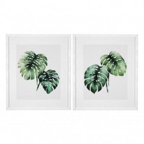 Obraz EC259 Tropical Plants set of 2